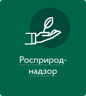 https://vip.1gl.ru/system/content/image/9/1/-688646/